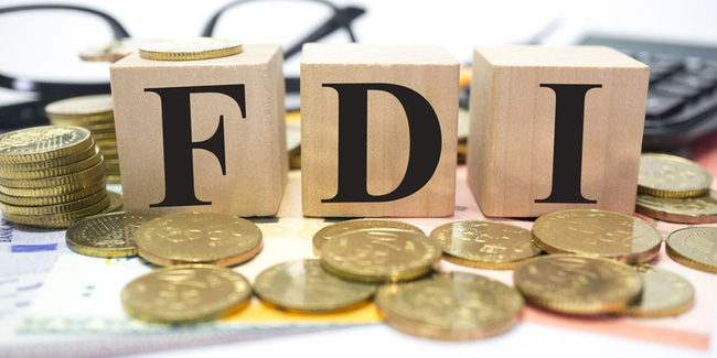 ADB Economist: It Would Take about a Decade to Reduce the Dependence on Foreign Capital