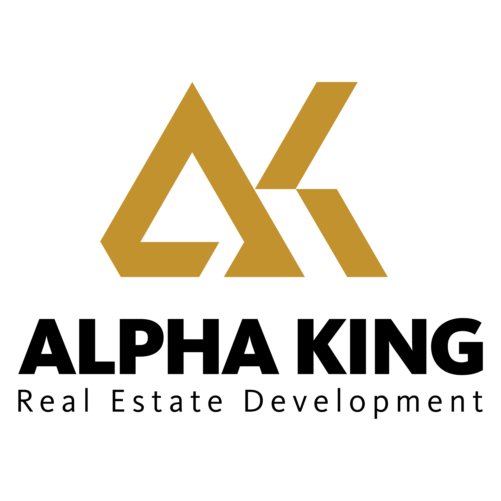 Alpha King—international real estate developer officially launched in Vietnam