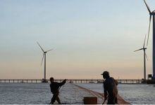 Vietnam's new price policy to boost wind power investments